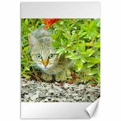 Hidden Domestic Cat With Alert Expression Canvas 12  X 18