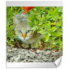Hidden Domestic Cat With Alert Expression Canvas 20  X 24