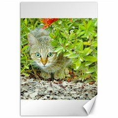 Hidden Domestic Cat With Alert Expression Canvas 20  X 30