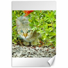 Hidden Domestic Cat With Alert Expression Canvas 24  X 36
