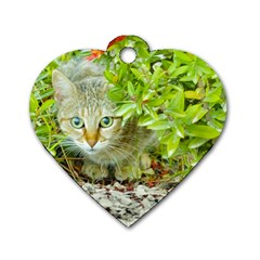 Hidden Domestic Cat With Alert Expression Dog Tag Heart (one Side)