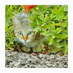 Hidden Domestic Cat With Alert Expression Medium Glasses Cloth