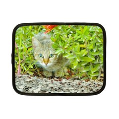 Hidden Domestic Cat With Alert Expression Netbook Case (small)