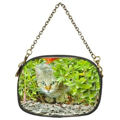 Hidden Domestic Cat With Alert Expression Chain Purses (two Sides)
