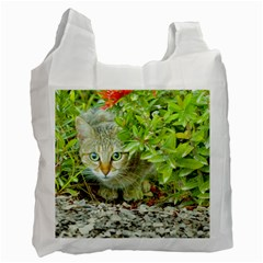 Hidden Domestic Cat With Alert Expression Recycle Bag (one Side)