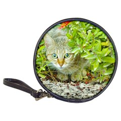 Hidden Domestic Cat With Alert Expression Classic 20 Cd Wallets