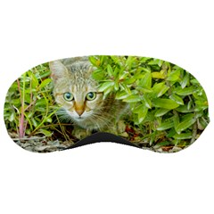 Hidden Domestic Cat With Alert Expression Sleeping Masks