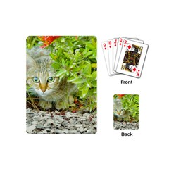 Hidden Domestic Cat With Alert Expression Playing Cards (mini)