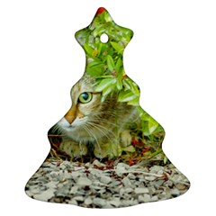 Hidden Domestic Cat With Alert Expression Christmas Tree Ornament (two Sides)