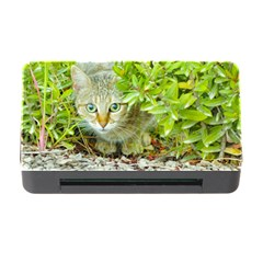 Hidden Domestic Cat With Alert Expression Memory Card Reader With Cf