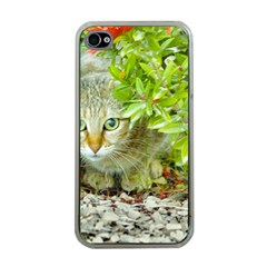 Hidden Domestic Cat With Alert Expression Apple Iphone 4 Case (clear)