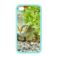 Hidden Domestic Cat With Alert Expression Apple Iphone 4 Case (color)