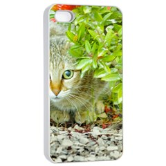 Hidden Domestic Cat With Alert Expression Apple Iphone 4/4s Seamless Case (white)