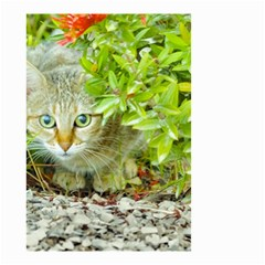 Hidden Domestic Cat With Alert Expression Small Garden Flag (two Sides)