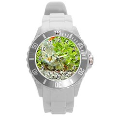 Hidden Domestic Cat With Alert Expression Round Plastic Sport Watch (l)