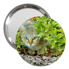 Hidden Domestic Cat With Alert Expression 3  Handbag Mirrors