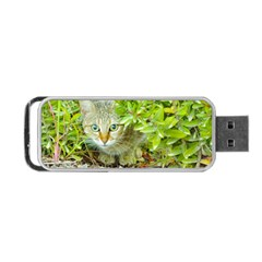 Hidden Domestic Cat With Alert Expression Portable Usb Flash (two Sides)