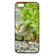 Hidden Domestic Cat With Alert Expression Apple Iphone 5 Seamless Case (black)