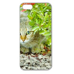 Hidden Domestic Cat With Alert Expression Apple Seamless Iphone 5 Case (clear)