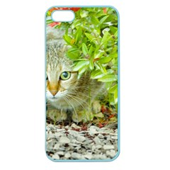 Hidden Domestic Cat With Alert Expression Apple Seamless Iphone 5 Case (color)