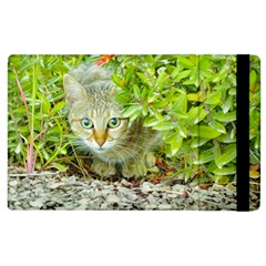 Hidden Domestic Cat With Alert Expression Apple Ipad 3/4 Flip Case