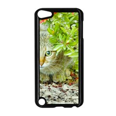 Hidden Domestic Cat With Alert Expression Apple Ipod Touch 5 Case (black)
