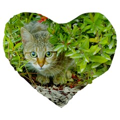 Hidden Domestic Cat With Alert Expression Large 19  Premium Heart Shape Cushions