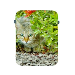 Hidden Domestic Cat With Alert Expression Apple Ipad 2/3/4 Protective Soft Cases