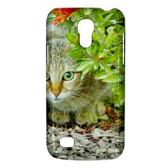 Hidden Domestic Cat With Alert Expression Galaxy S4 Mini