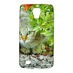 Hidden Domestic Cat With Alert Expression Galaxy S4 Active