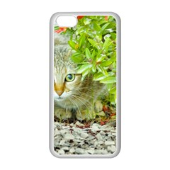 Hidden Domestic Cat With Alert Expression Apple Iphone 5c Seamless Case (white)