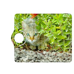 Hidden Domestic Cat With Alert Expression Kindle Fire Hdx 8 9  Flip 360 Case