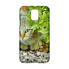 Hidden Domestic Cat With Alert Expression Samsung Galaxy S5 Hardshell Case