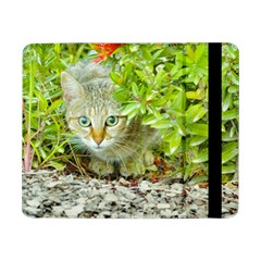 Hidden Domestic Cat With Alert Expression Samsung Galaxy Tab Pro 8 4  Flip Case