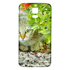 Hidden Domestic Cat With Alert Expression Samsung Galaxy S5 Back Case (white)