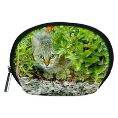 Hidden Domestic Cat With Alert Expression Accessory Pouches (medium)