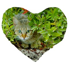 Hidden Domestic Cat With Alert Expression Large 19  Premium Flano Heart Shape Cushions