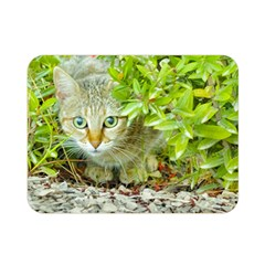 Hidden Domestic Cat With Alert Expression Double Sided Flano Blanket (mini)