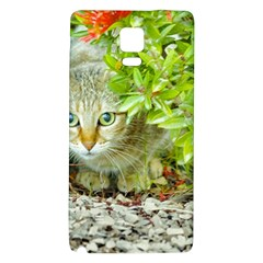 Hidden Domestic Cat With Alert Expression Galaxy Note 4 Back Case