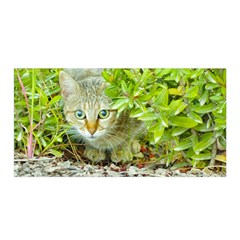 Hidden Domestic Cat With Alert Expression Satin Wrap