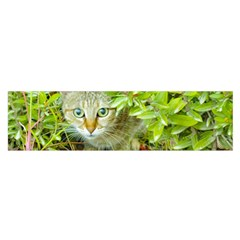 Hidden Domestic Cat With Alert Expression Satin Scarf (oblong)