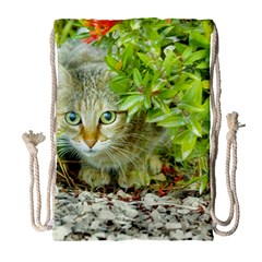 Hidden Domestic Cat With Alert Expression Drawstring Bag (large)