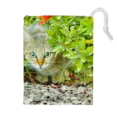 Hidden Domestic Cat With Alert Expression Drawstring Pouches (extra Large)