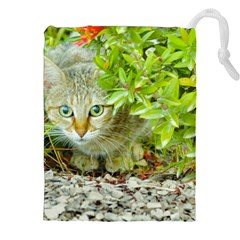 Hidden Domestic Cat With Alert Expression Drawstring Pouches (xxl)