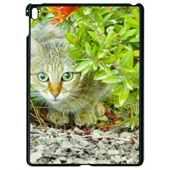 Hidden Domestic Cat With Alert Expression Apple Ipad Pro 9 7   Black Seamless Case