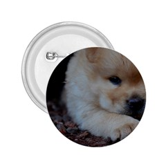 Puppy Chow Chow 2 25  Buttons