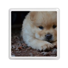 Puppy Chow Chow Memory Card Reader (square)