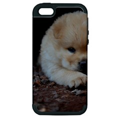 Puppy Chow Chow Apple Iphone 5 Hardshell Case (pc+silicone)