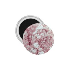 Pink Colored Flowers 1 75  Magnets