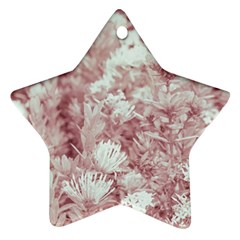 Pink Colored Flowers Ornament (star)